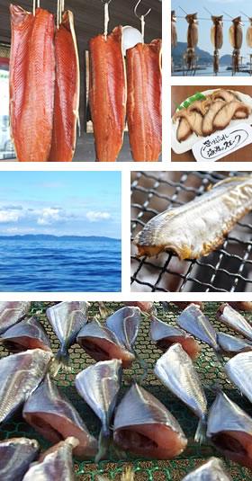 笹川流れ観光汽船の干物 美味の秘密